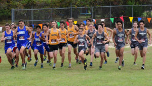 Veterans girls, boys win region; WR and HoCo girls qualify for state